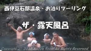 2012nishiizu_roten